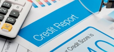 Credit repair business credit scoring model